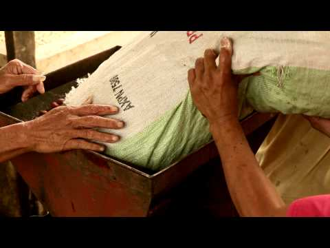 Hineleban Foundation: Our Coffee Story